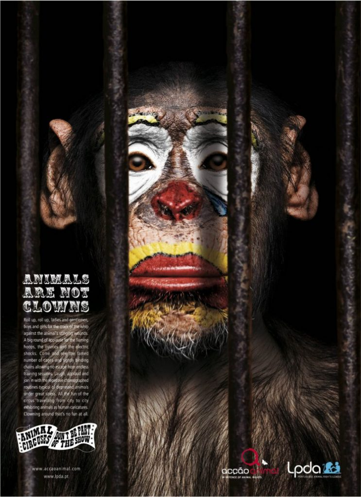 Διαφήμιση με τίτλο 'Animals are not clowns' (Acção Animal)  © Agency: Partners Lisboa, Portugal