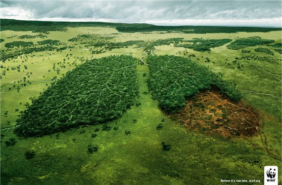 Διαφήμιση με τίτλο 'Before it's too late...' (WWF) © Agency: TBWA, Paris, France