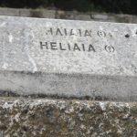 Heliaia